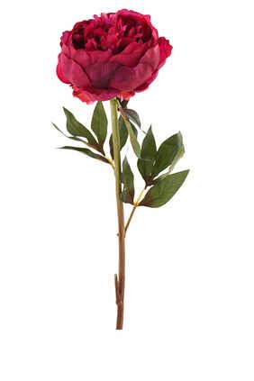 زهور فاوانيا صناعية