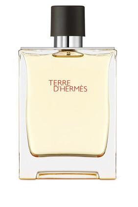 Eau de toilette من Terre d'Hermès، بخاخ للسفر سعة 30 مل وعبوة بديلة سعة 125 مل